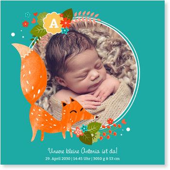 Geburtskarten, Kleiner Fuchs