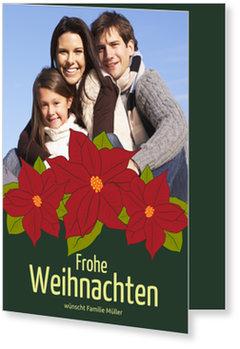 Aktuelle Weihnachtskarten, Blühender Weihnachtsstern auf Grün