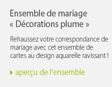 Ensemble mariage décoration plume