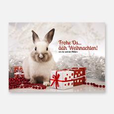 Tierische Weihnachtskarten